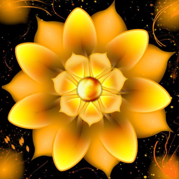 yellowlotus20130301