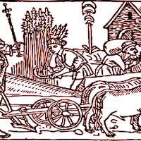 Christina Cok: a Medieval Life