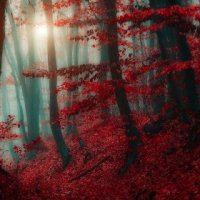 Picture: Land of Elves by Ildiko Neer