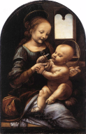 madonna-with-a-flower-davinci-c1478