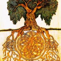 Root of the Kingdom