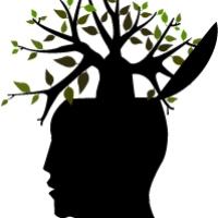 7 Must-Read Books on Education | Brain Pickings