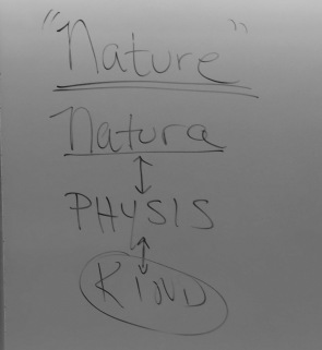 C.S. Lewis once explored how the term PHYSIS comes into Latin as Natura and into English as Kind.